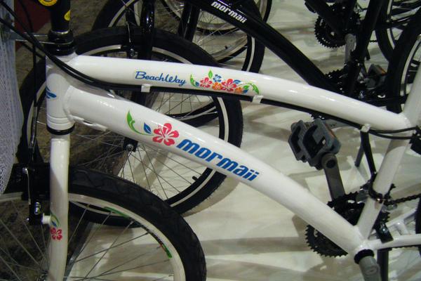 5eef0d06e PEDAL MOSSORÓ  Confira as bicicletas que atraem as atenções na Bike ...