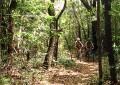 Chapada do Araripe no Ceará ganha roteiro de cicloturismo