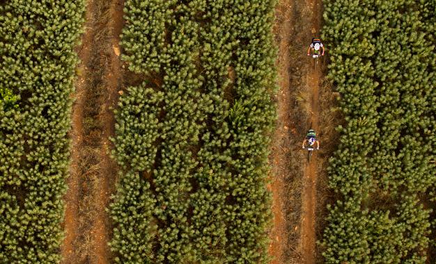 Fumic e Avancini no percurso Foto: Gary Perkin/Cape Epic/Sportzpics