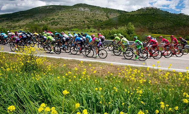 No pelotão do Giro D'Itália