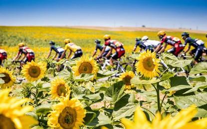Tour de France convida 3 equipes francesas e uma belga em 2017