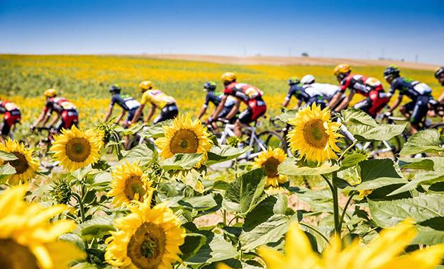 Pelos belos cenários do Tour de France