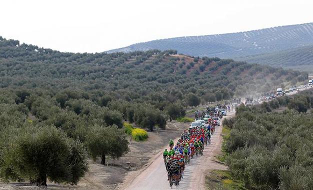 No percurso pela Andalucia
