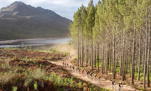 Pelotão na Cape Epic: ultramaratona começa neste sábado na Cidade do Cabo