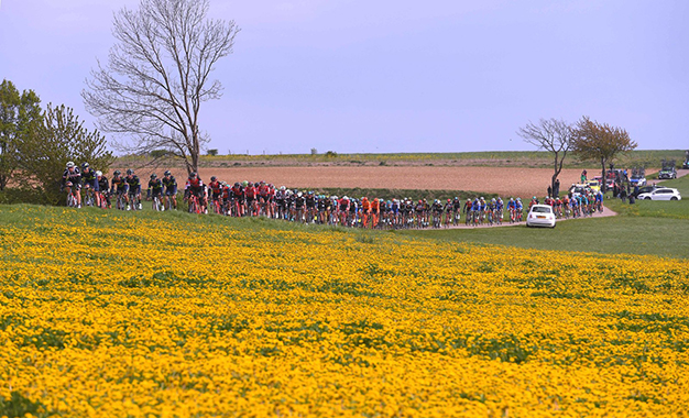 Pelotão na Amstel Gold race