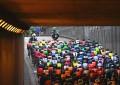 Mitos, verdades e equívocos do mundo do ciclismo
