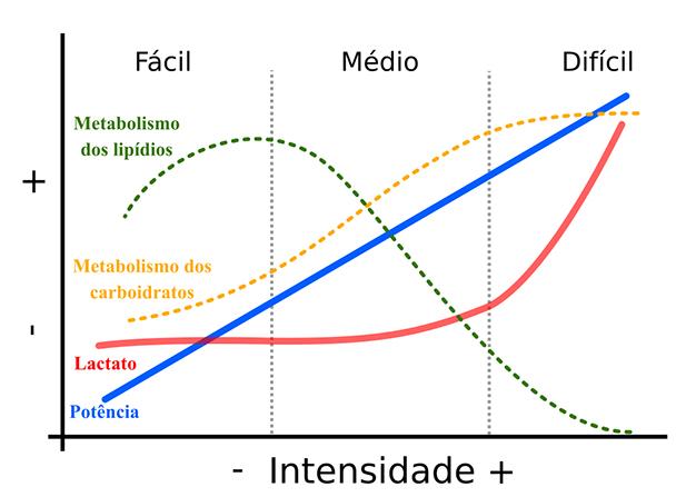 Legenda  a fisiologia do treinamento polarizado está relacionada com o uso  das fontes de energia aeróbias (gorduras e carboidratos) e anaeróbia (com  ... 93925b4bbd
