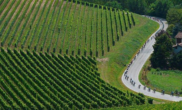 Gran Piemonte: Sonny Colbrelli e Filippo Ganna confirmados